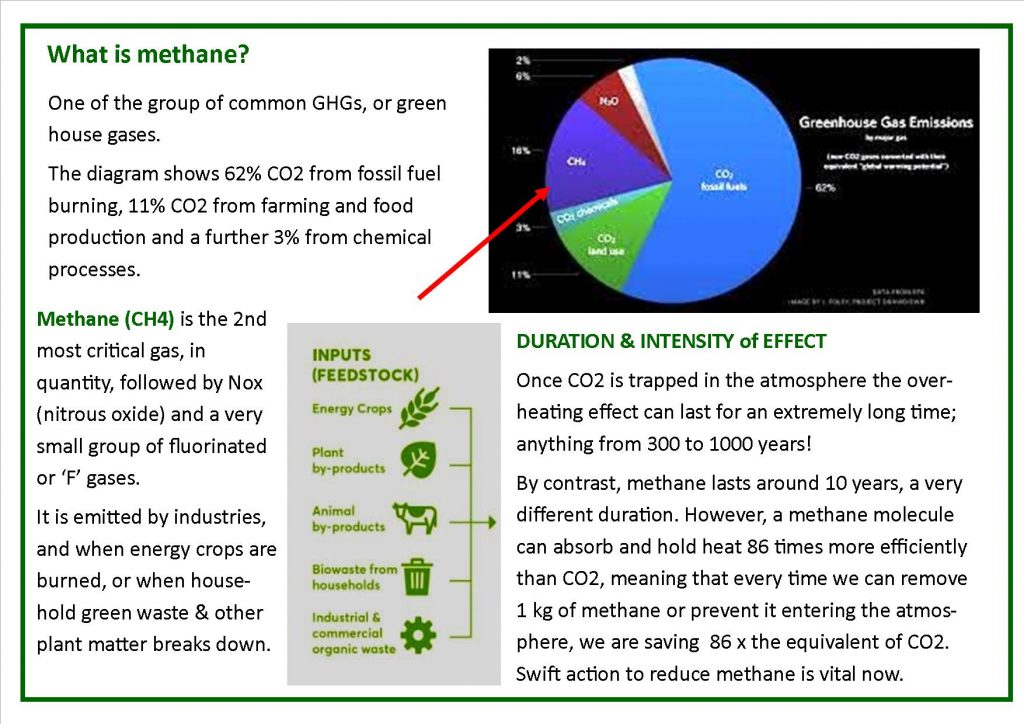 Proportions of Green House Gases